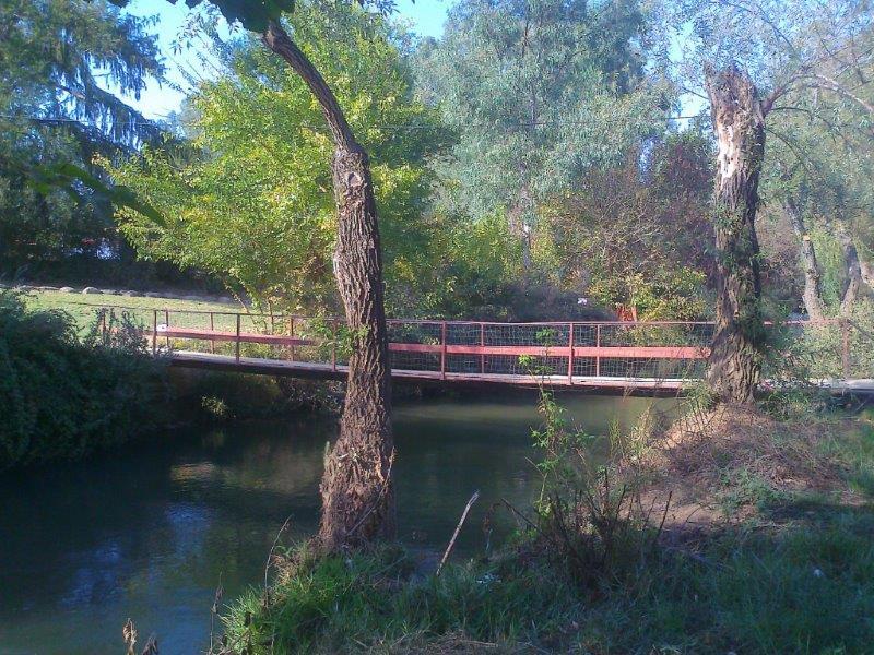 טיול רגלי בטבע + שמש + פירות = שלווה