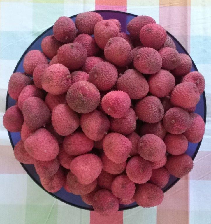 אחד הפירות האהובים עלי – ליצ'י!!