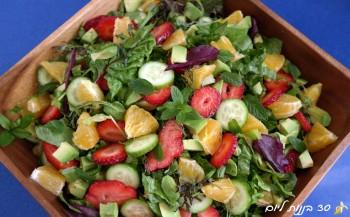 strawberry-orang-lettuce-salad