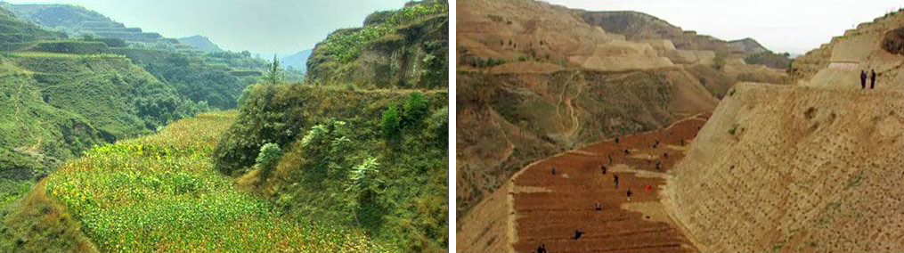loess-plateau-rehabilitation-project-3